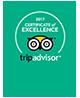 Trip Advisor Sertificate